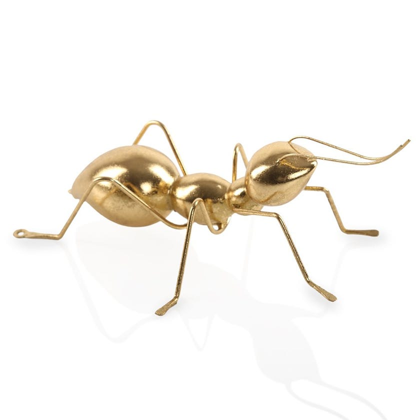 Electroplated Gold Ant, Medium (21 x 14.5 cms)