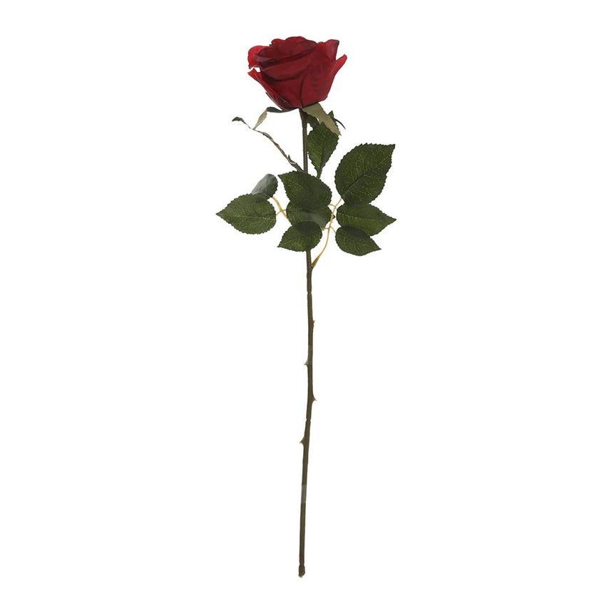 Elegance Single Rose Bud, Dark Red - 50 cms