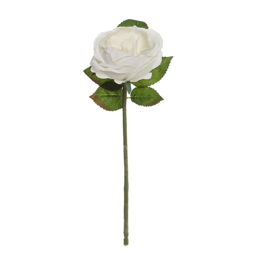 Rose Romance Single Stem, White & Cream – 31 cms