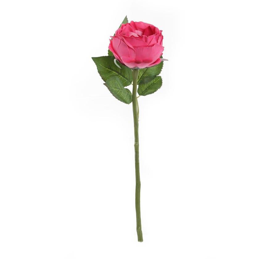 Rose Romance Single Stem, Hot Pink – 31 cms