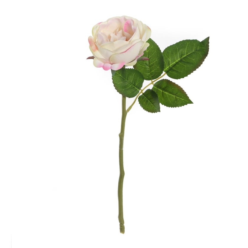 Rose Romance Single Stem, Pink & Ivory – 31 cms
