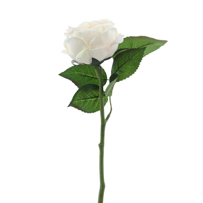 Rose Romance Single Stem, Cream & Peach – 31 cms