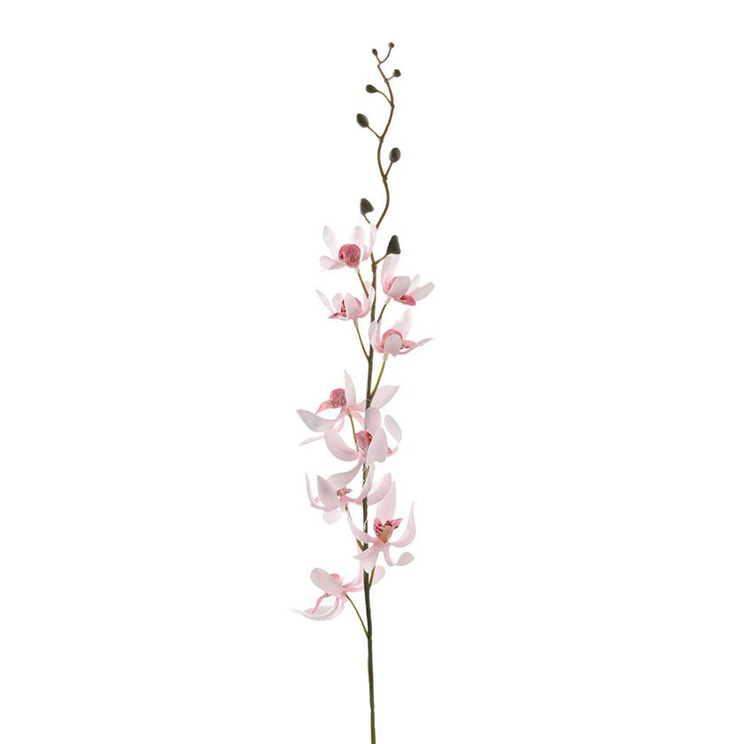 Phoenix Orchid Stem, Pink – 69 cms