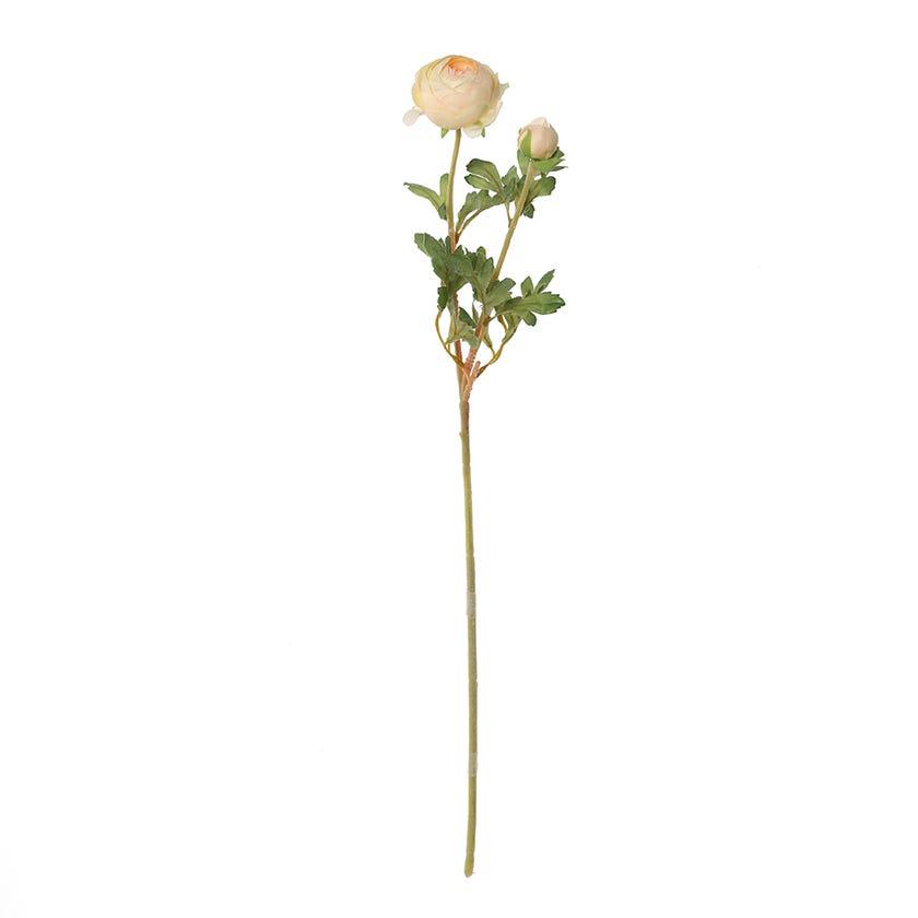 Ranunculus Ball Spray, Cream & Peach – 62 cms