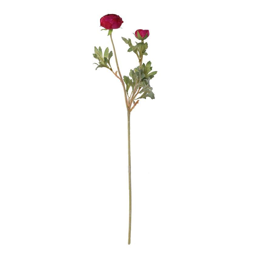Ranunculus Ball Spray, Magenta – 62 cms