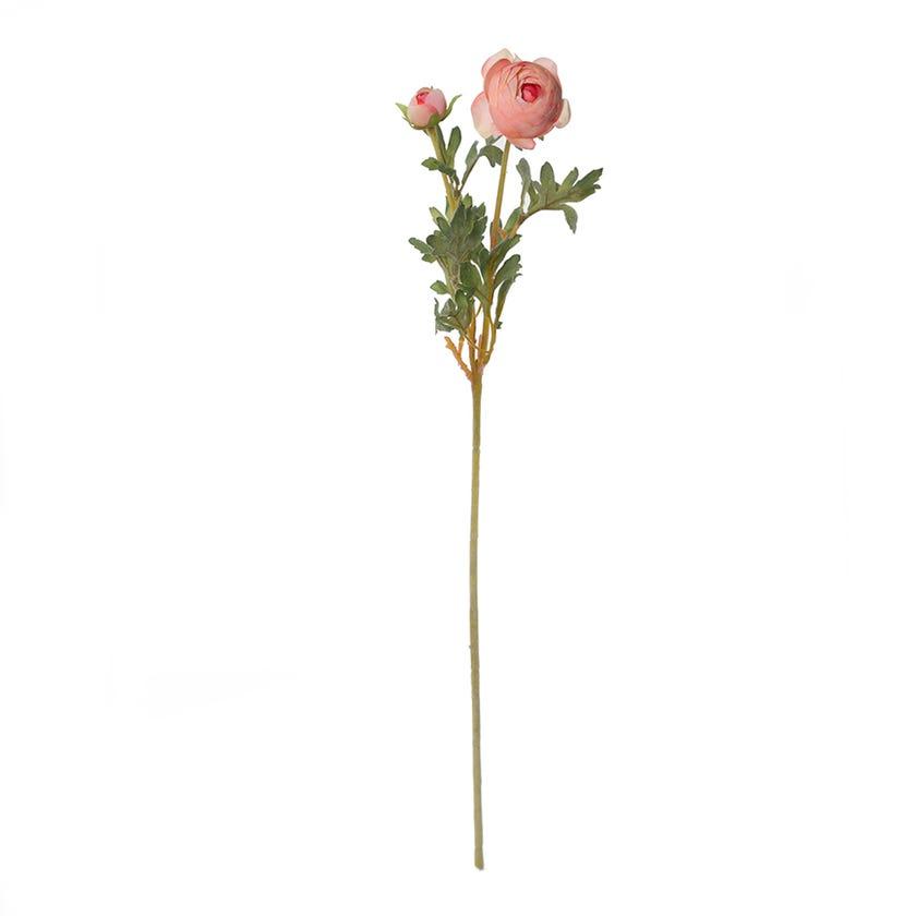 Ranunculus Ball Spray, Rose Pink – 62 cms