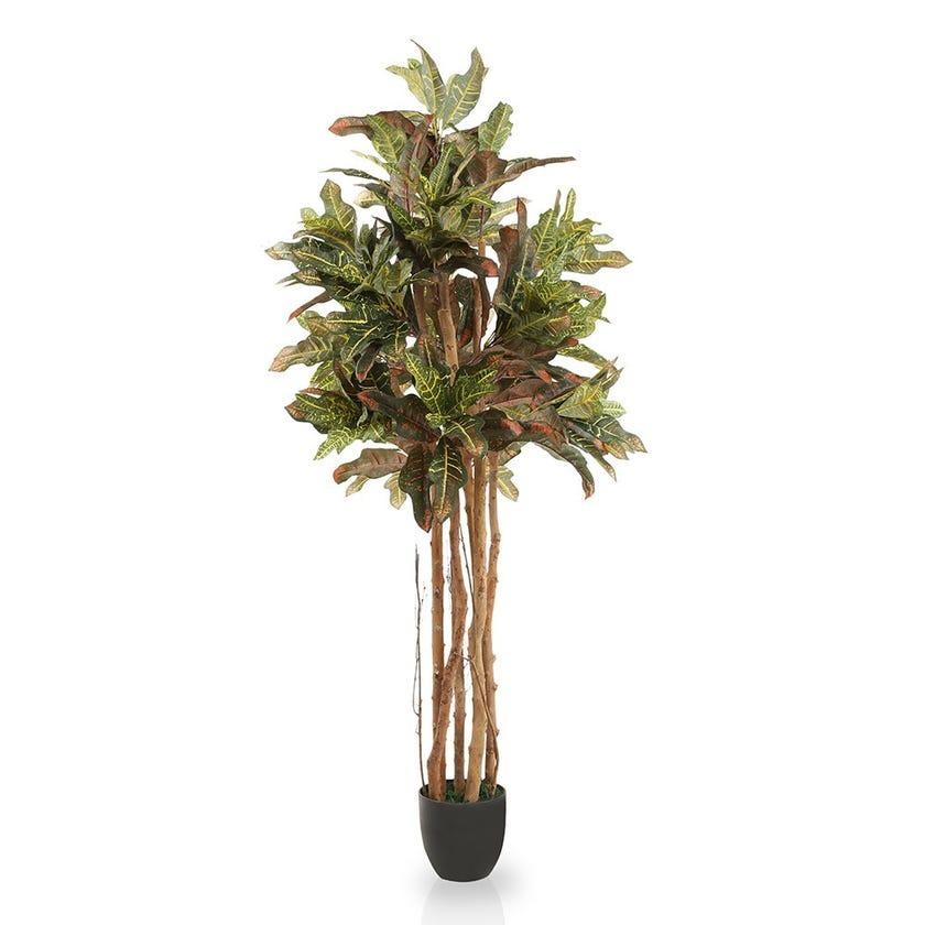 Ceylon Style Croton Artificial Tree (Natural, 152.4)