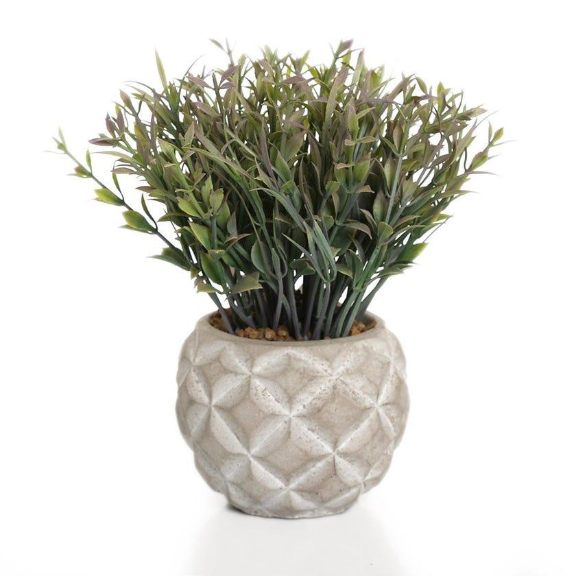Artificial Grass in Round Cement Pot, Green - 18 cms