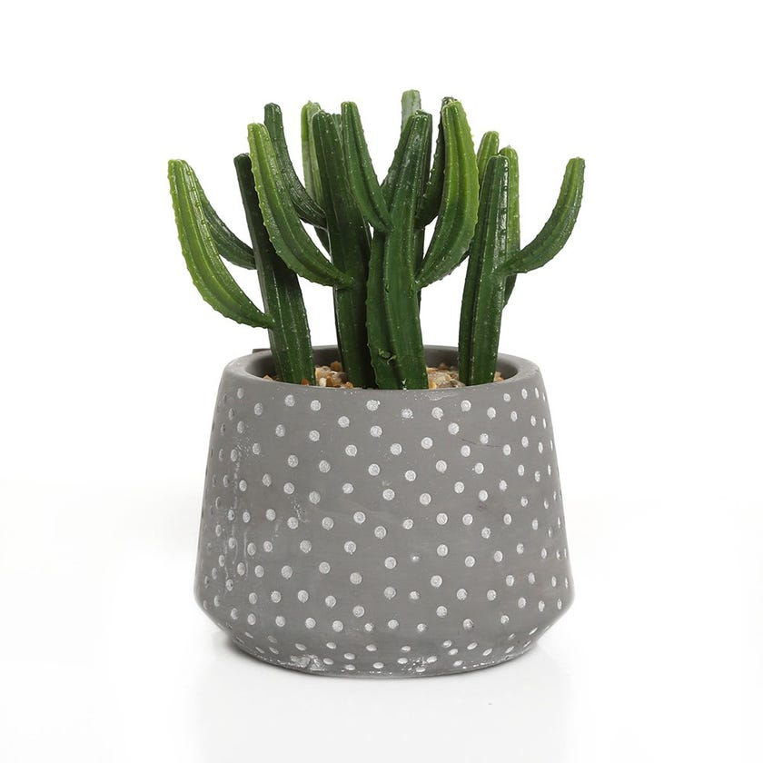 Faux Cactus in Dotted Cement Pot, Green - 15 cms