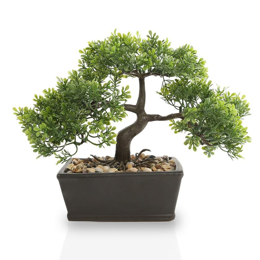 Bonsai Plant in Rectangular Pot, Green - 23 cms