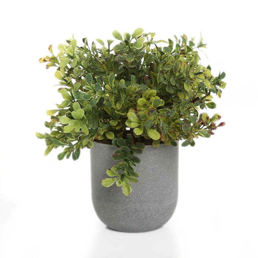 Faux Plant in Plastic Pot, Green - 24 cms