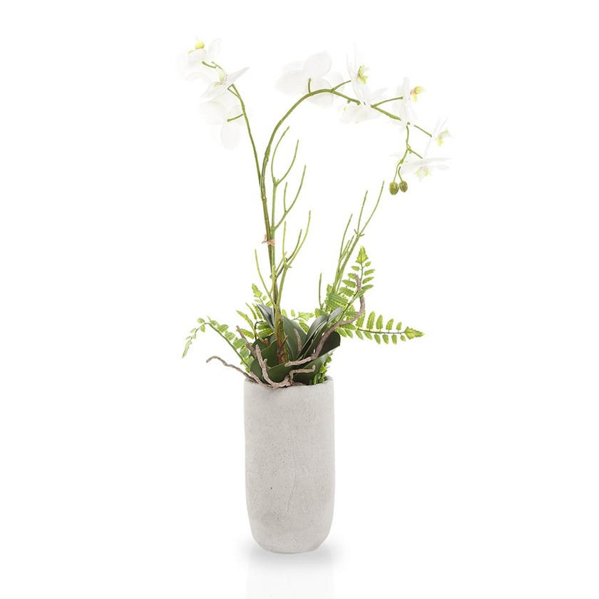 Artificial Orchid Plant with Pot, White – 64 cms