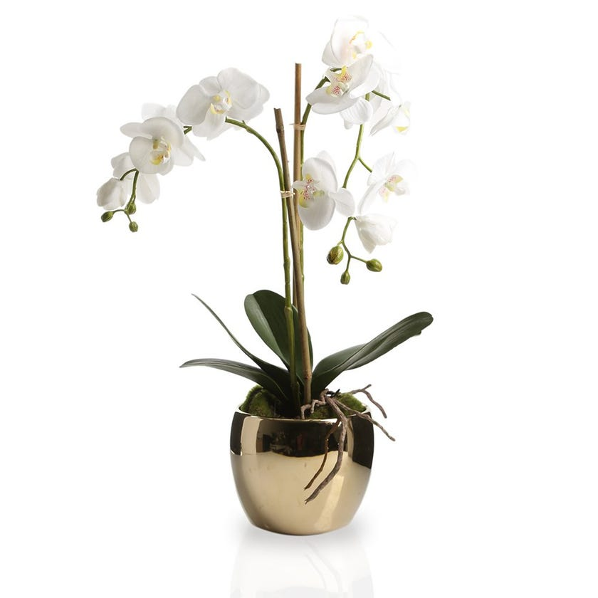 Artificial Orchid Plant with Golden Pot, White – 54 cms
