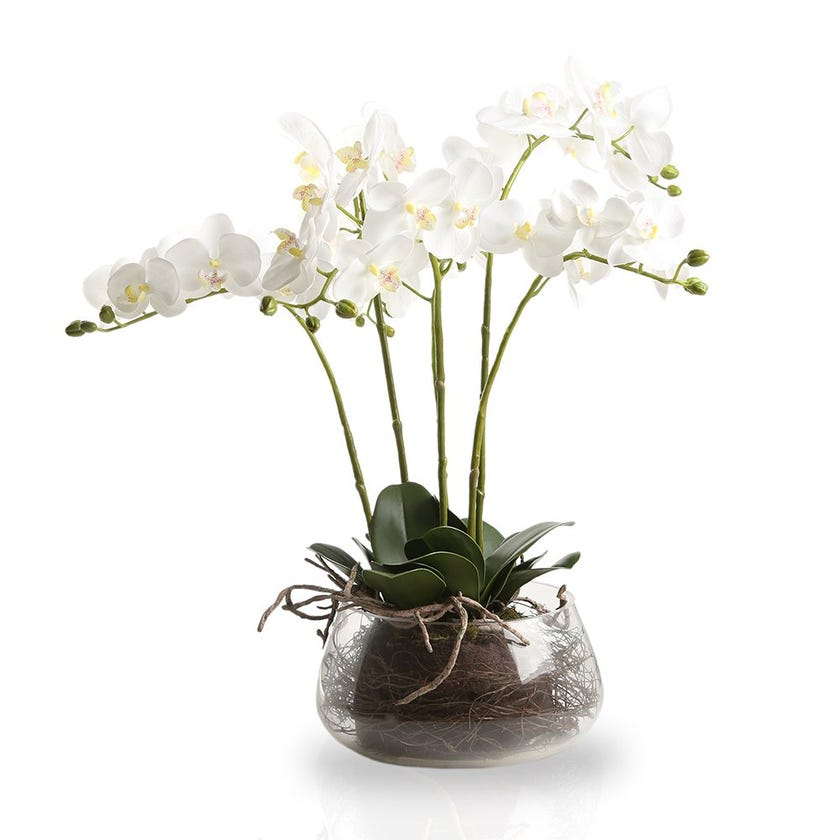Artificial Orchid Plant with Glass Pot, White – 61 cms