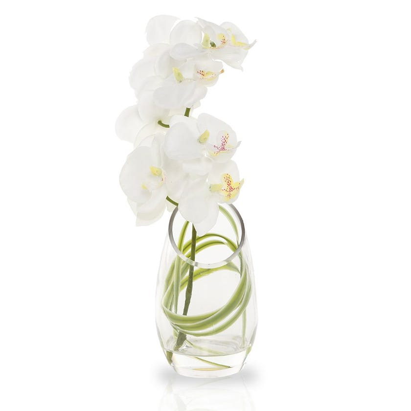 Artificial Orchid Plant with Glass Pot, White – 20 cms