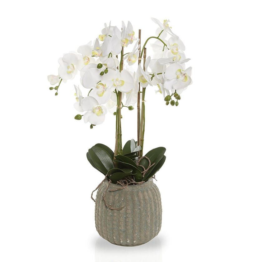 Artificial Orchid Plant with Rustic Pot, White – 77 cms