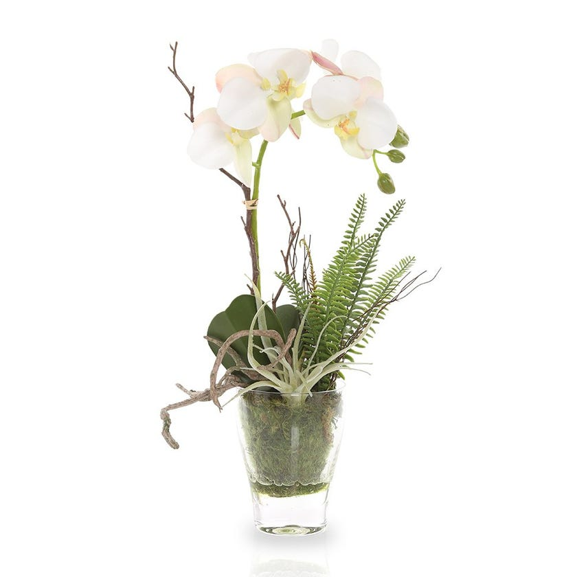 Artificial Orchid Plant with Glass Pot, White – 41 cms
