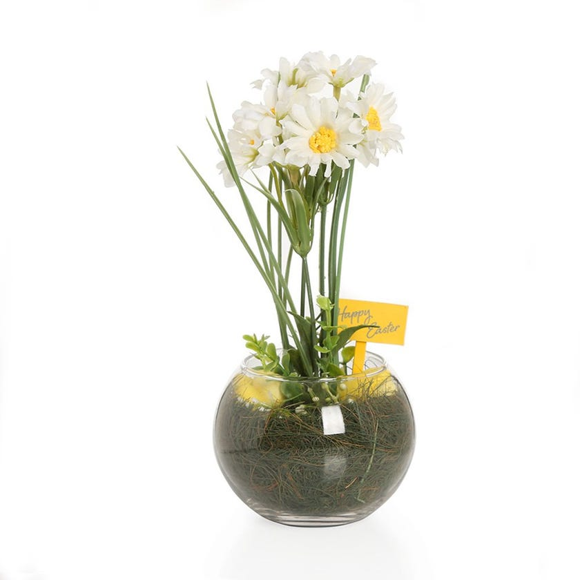 Artificial Daisy in Glass Vase – 23 cms